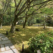 苔の庭園への入口