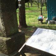 総武鉄道で佐倉を訪れて詠んだ句だそうです