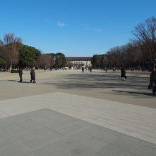 上野恩賜公園(噴水側)