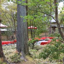 休憩所。赤いところが風情を感じます