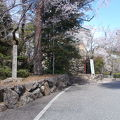 写真:小倉山城跡