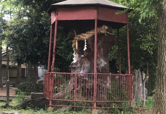 神明大神 (中丸子神社)