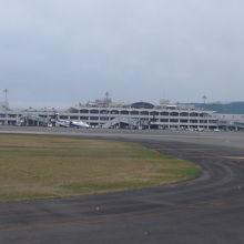 名前の通りブーゲンビリアが空港入り口に咲いていました!!