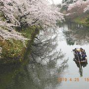 弘前さくらまつり 念願叶った弘前公園での花見は最高
