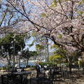 長崎南山手 グラバー園 春浪漫フェスティバル