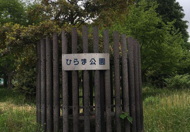 広い公園です。