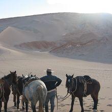 砂丘の上にて