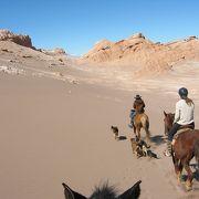 アタカマ砂漠で乗馬三昧(初心者向け)