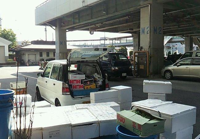 横浜市 中央卸売市場本場