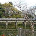 写真:高倉橋 (京都御苑内)
