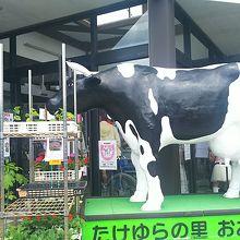 入口の牛さん!(^-^)ゝ゛