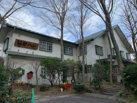 箱根強羅温泉 コージーイン 箱根の山 写真