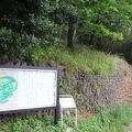 写真:松山城跡