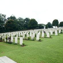 大戦戦没者の墓地