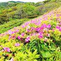 写真:湘南国際村