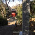 写真:宝塔 (池上本門寺)