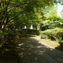 ミュージアムの東側入口です 宇治上神社からはここから入ります