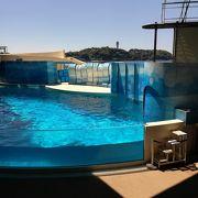 家族で楽しい思い出を作れた水族館