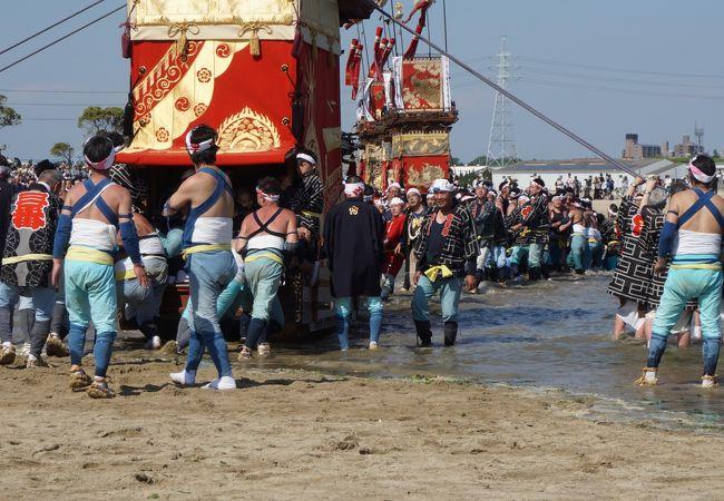 一番の見どころは神前神社前の海浜への山車の曳き下ろし