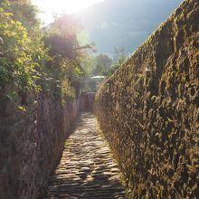 朝日を受ける小道