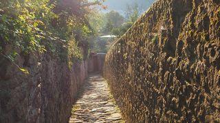 哲学者の道とカールテオドール橋を結ぶ小道