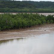 西表島の東の大河
