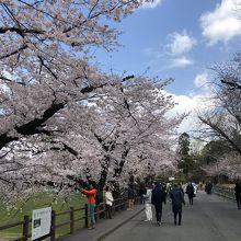 熊本城公園
