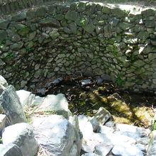 小野小町はこの井戸水で顔を洗っていたそうです