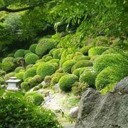 観音寺神恵院の庭園