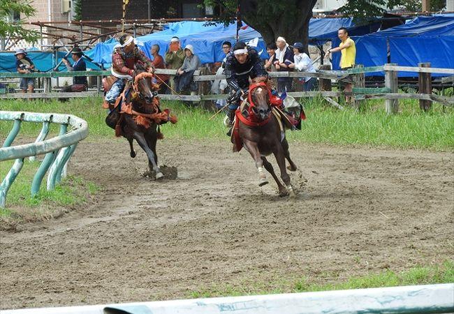 甲冑武者による競馬は迫力満点