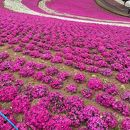 太田市北部運動公園