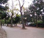 蘆花恒春園