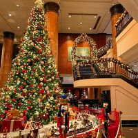 見事なクリスマスツリーです!