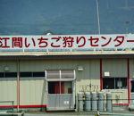 江間いちご狩りセンター
