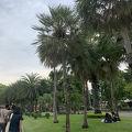 写真:チャトゥチャック公園