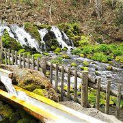 ふきだし公園内に沸く、京極の名水。