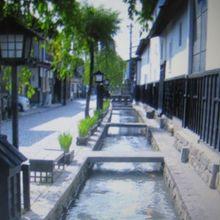 鯉も散見した街並