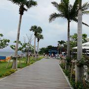 雰囲気のよいビーチ