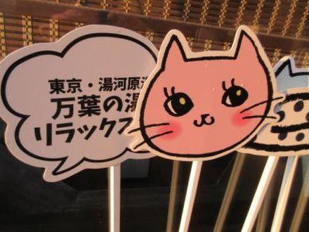 東京・湯河原温泉 万葉の湯 写真