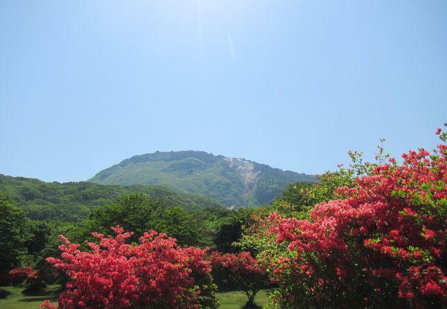 恵山岬灯台公園