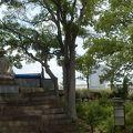 写真:大阪城 伏見櫓跡