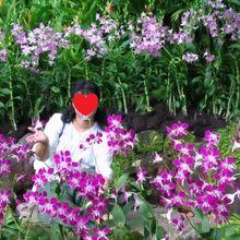 花に囲まれて♥