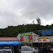 沖縄北部へ行く拠点です