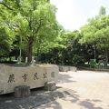 写真:蕨市民公園