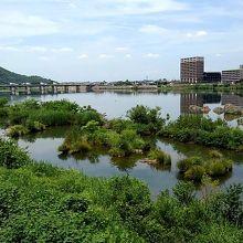 川沿い遊歩道からの風景