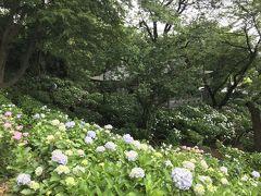 登戸・新百合ヶ丘のツアー