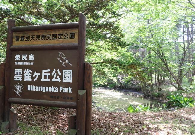 雲雀ヶ丘公園
