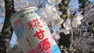 寒河江八幡宮本殿前より桜がきれい