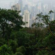 香港いちの絶景スポット