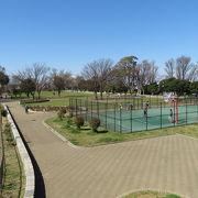 見どころが多い公園